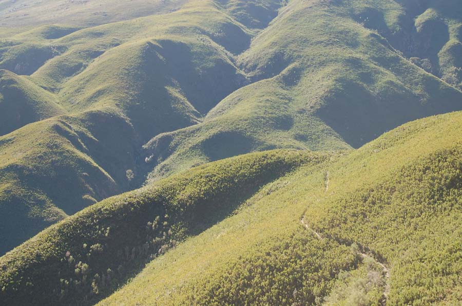 The rolling granite hills that sit below the mountains are thick with fynbos vegetation.