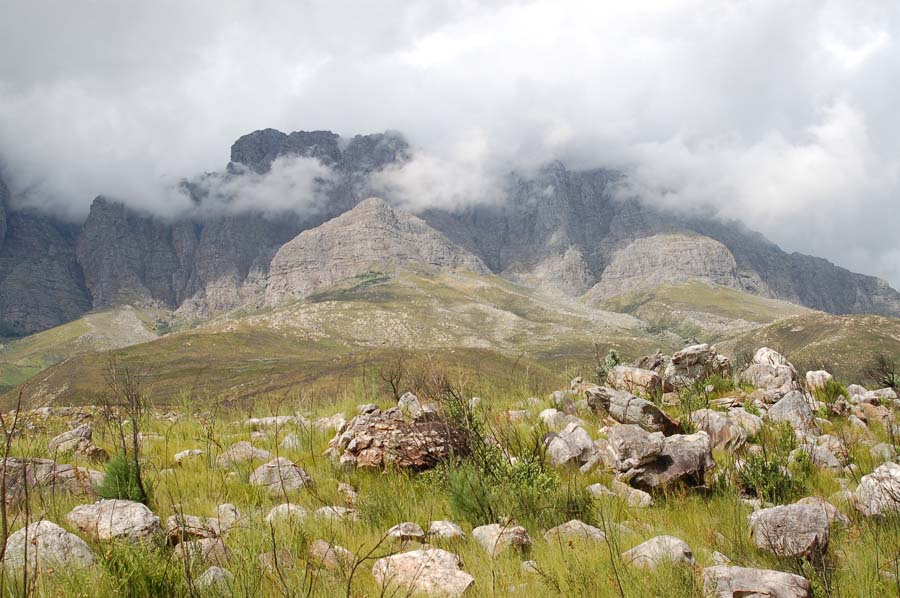 Some mountains in the Cape Winelands are nearly twice the height of Table Mountain.