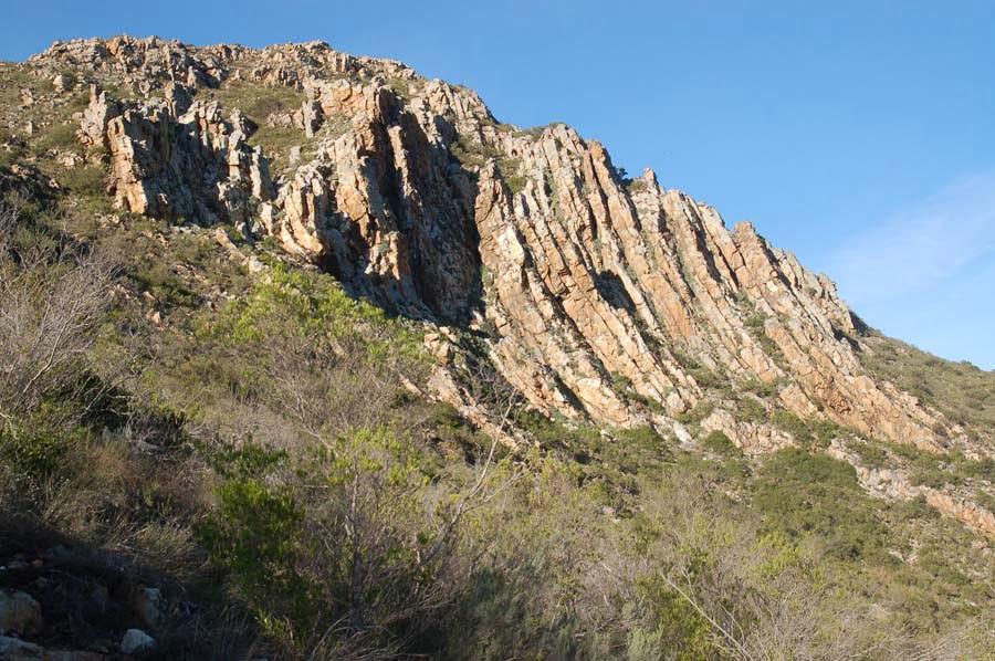 Porcupine Hills: Naturally