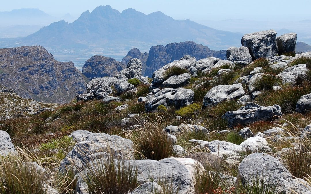 HIKING IN FRANSCHHOEK: THE MONT ROCHELLE RESERVE